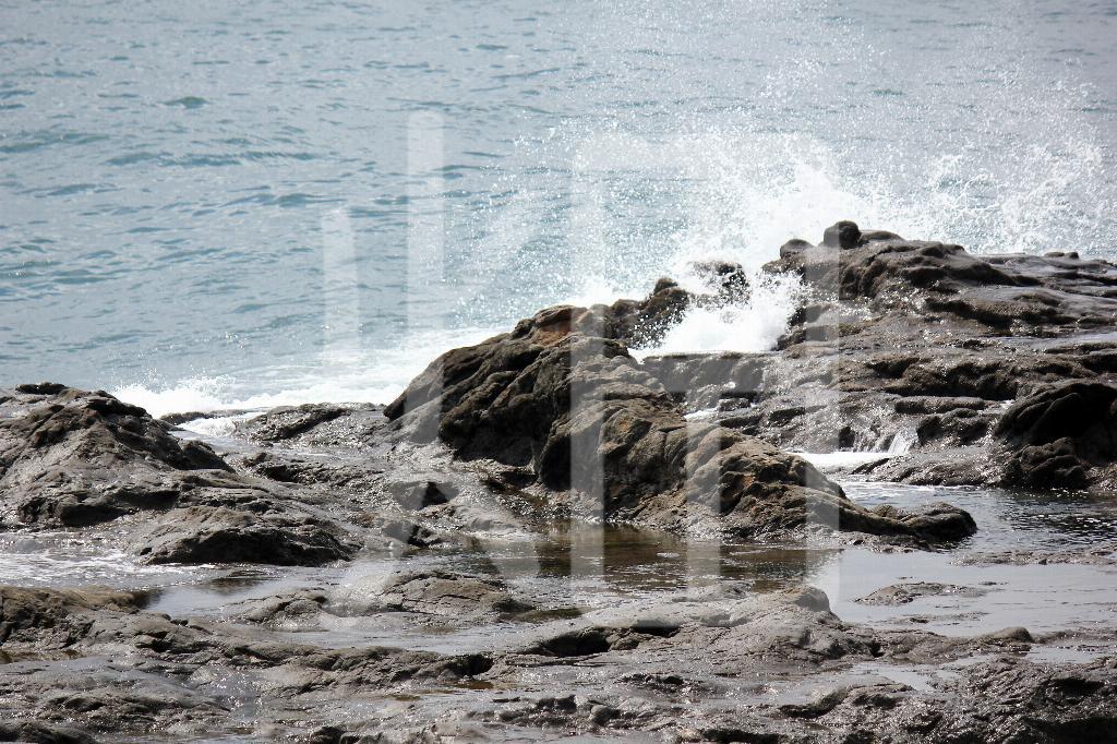 そざい畑,素材畑,江の島岩礁