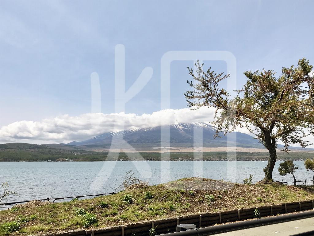 そざい畑,素材畑,湖から富士山を望む