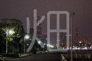そざい畑,素材畑,夜の横浜港から街を見る