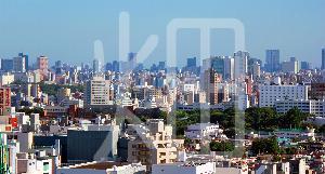 そざい畑,素材畑,夏 東京