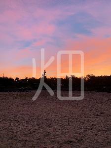 そざい畑,素材畑,沖縄の空を覆う夕焼け