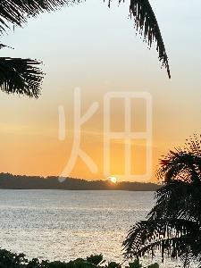 そざい畑,素材畑,沖縄の海